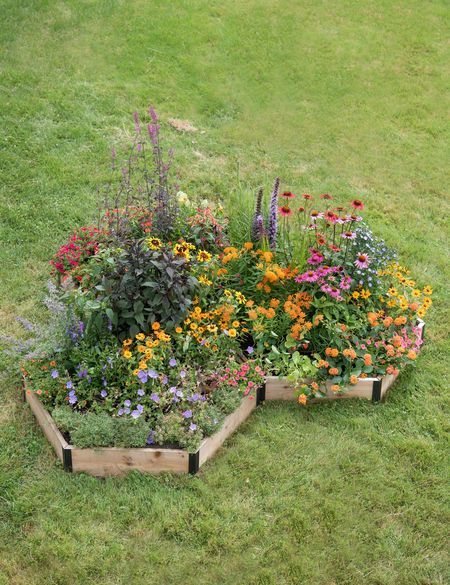 A small flower garden bed in the middle of a lawn  #smallGarden #SmallGardenDesign #smallyardlandscaping #gardenIdeas #backyardLandscaping #backyardLandscapingIdeas #landscaping