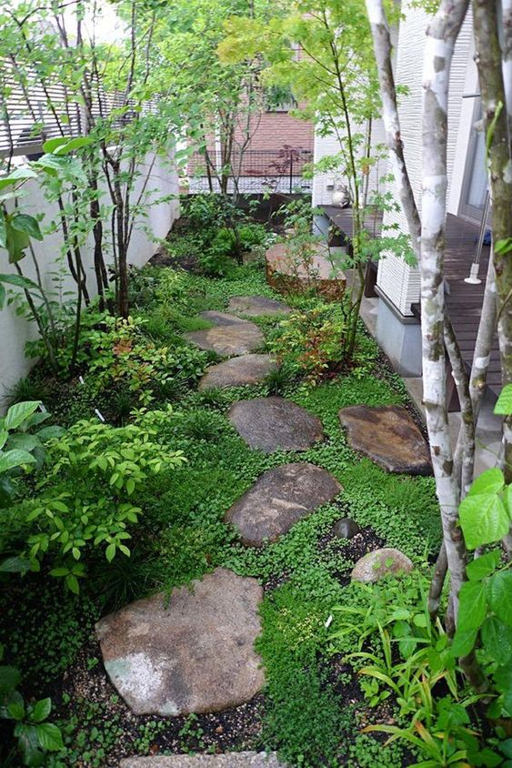 A small garden with stepping stones in the backyard  #smallGarden #SmallGardenDesign #smallyardlandscaping #gardenIdeas #backyardLandscaping #backyardLandscapingIdeas #landscaping