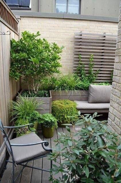 A small garden organized on a patio #patio #smallGarden #SmallGardenDesign #smallyardlandscaping #gardenIdeas #backyardLandscaping #backyardLandscapingIdeas #landscaping