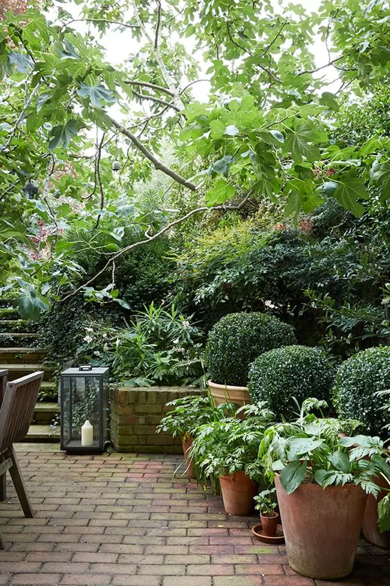 A small garden with a outdoor dining room in the backyard  #smallGarden #SmallGardenDesign #smallyardlandscaping #gardenIdeas #backyardLandscaping #backyardLandscapingIdeas #landscaping