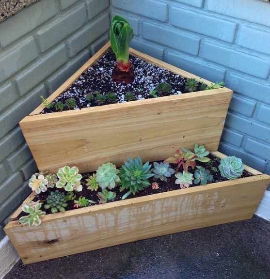A small garden with succulents in the corner  #smallGarden #SmallGardenDesign #smallyardlandscaping #gardenIdeas #backyardLandscaping #backyardLandscapingIdeas #landscaping