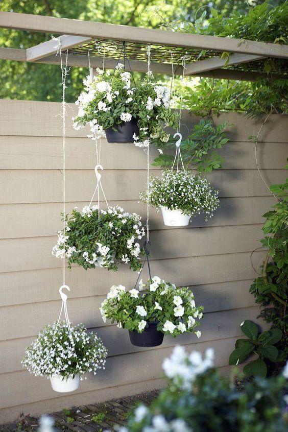 Hanging planters near a fence  #smallGarden #SmallGardenDesign #smallyardlandscaping #gardenIdeas #backyardLandscaping #backyardLandscapingIdeas #landscaping