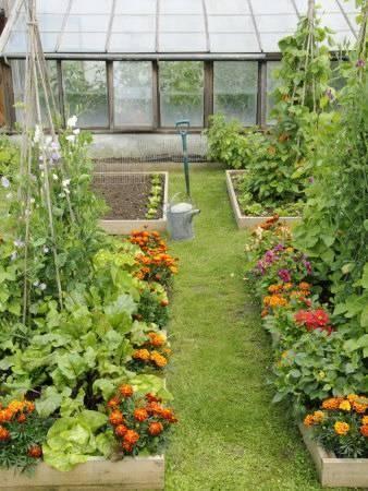 Vegetable garden layout for small spaces  #smallGarden #SmallGardenDesign #smallyardlandscaping #gardenIdeas #backyardLandscaping #backyardLandscapingIdeas #landscaping