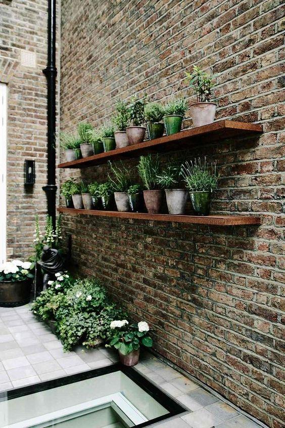 a small garden with herbs on shelves  #smallGarden #SmallGardenDesign #smallyardlandscaping #gardenIdeas #backyardLandscaping #backyardLandscapingIdeas #landscaping