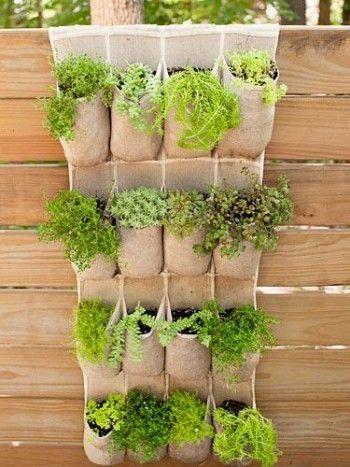 Vertical small garden with herbs  #smallGarden #SmallGardenDesign #smallyardlandscaping #gardenIdeas #backyardLandscaping #backyardLandscapingIdeas #landscaping