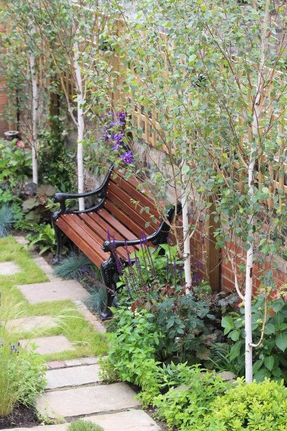 A bench in a small garden to make a resting spot  #smallGarden #SmallGardenDesign #smallyardlandscaping #gardenIdeas #backyardLandscaping #backyardLandscapingIdeas #landscaping