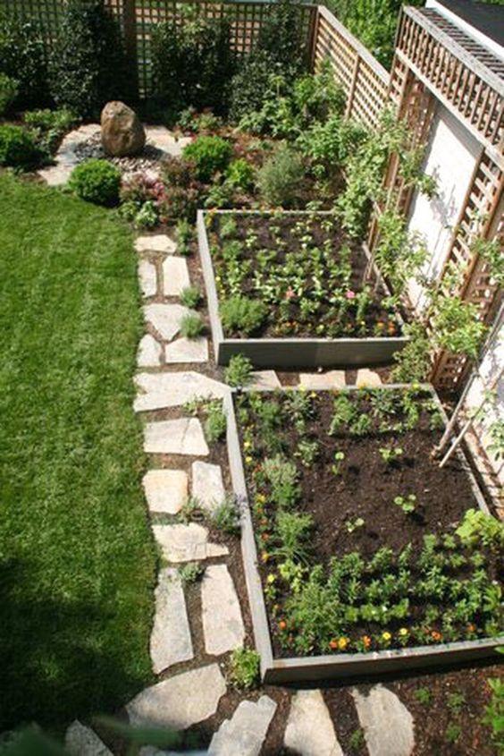 Small garden beds near a fence #fence #smallGarden #SmallGardenDesign #smallyardlandscaping #gardenIdeas #backyardLandscaping #backyardLandscapingIdeas #landscaping