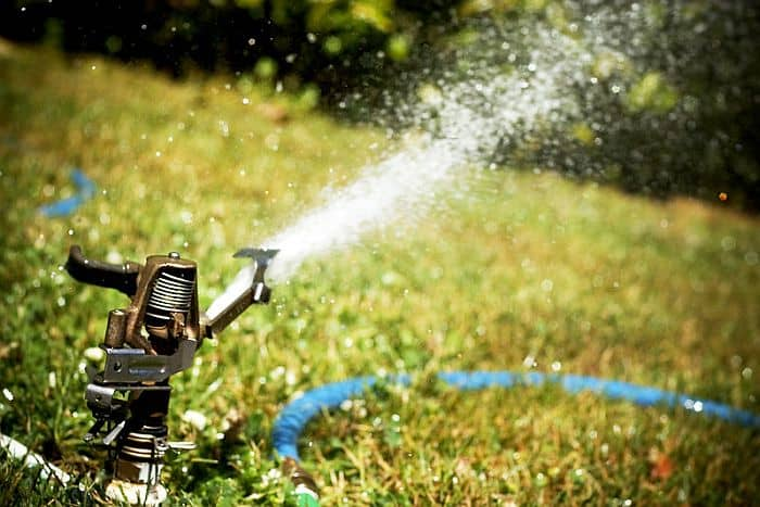 A close up shot of  a sprinkler with water coming out from it