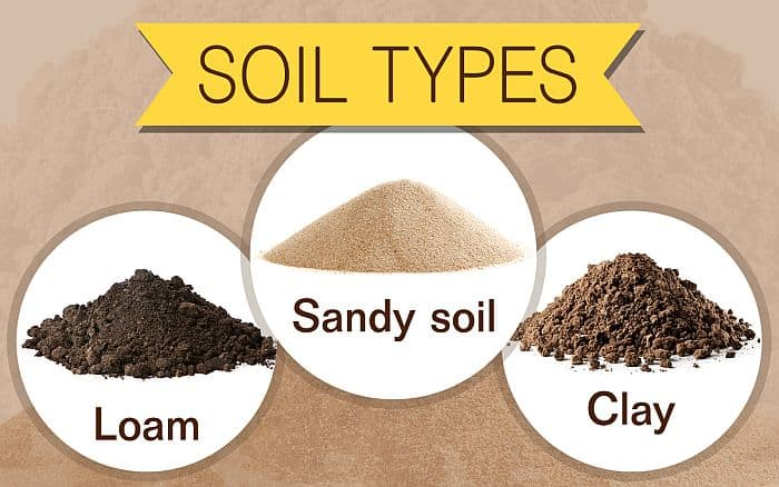An infographic about soil types