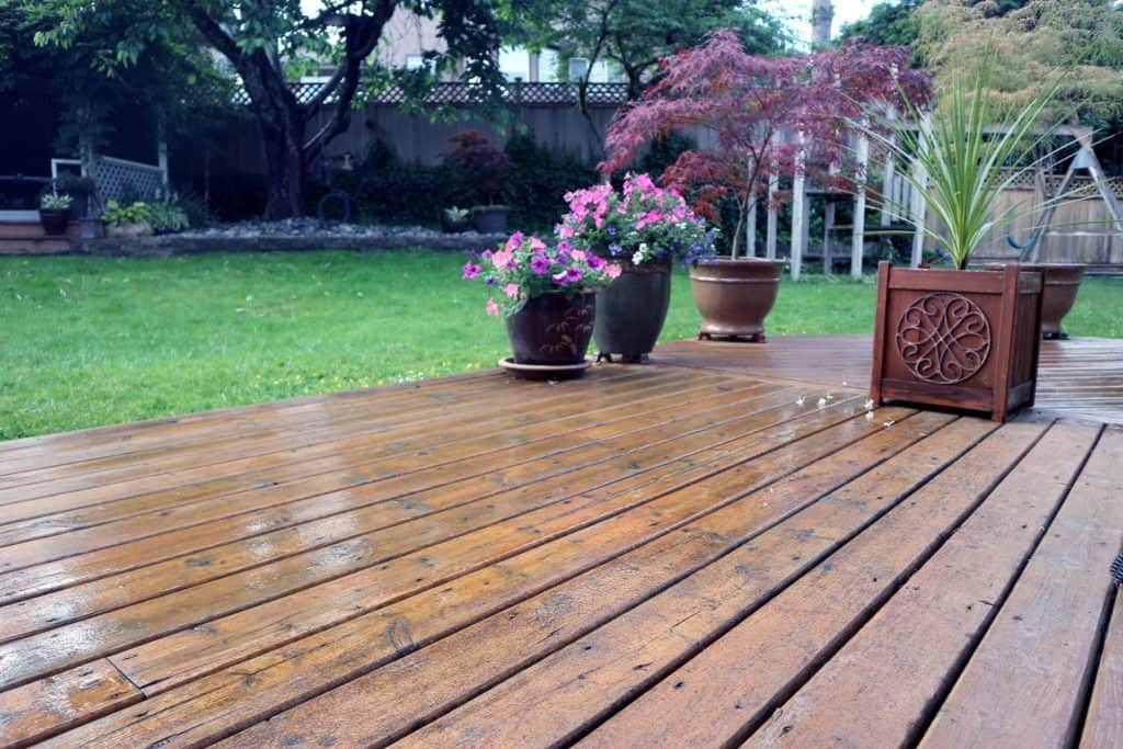 Shiny wooden deck